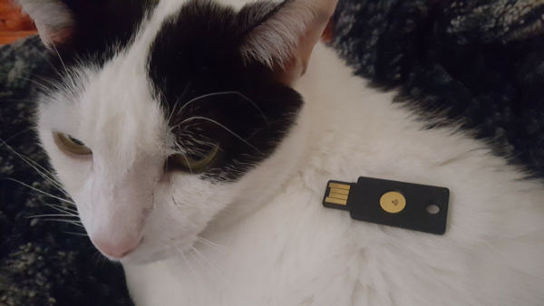 A YubiKey Neo on a cat